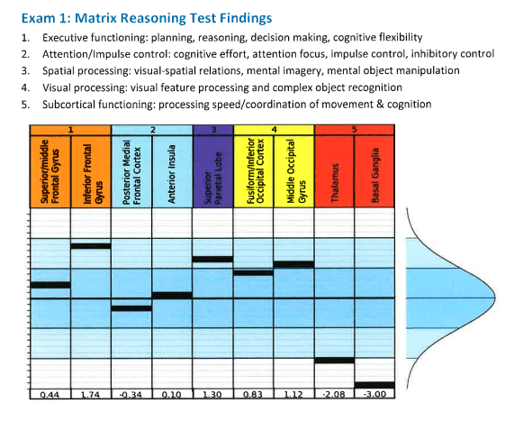 Exam 1: Matrix Reasoning Test Findings