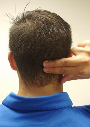 Demonstration of where to place your fingers to feel neck muscles