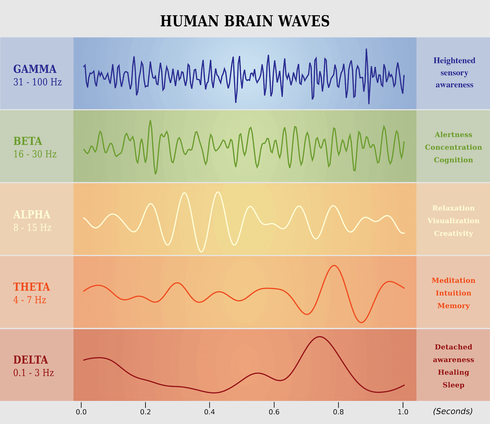 Gamma, Beta, Alpha, Theta, and Delta brainwaves have different functions