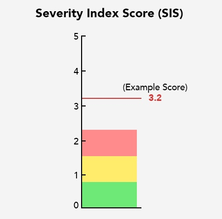 An example of what an SIS score can look like for a concussed person