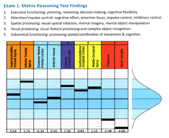 Example of matrix reasoning findings