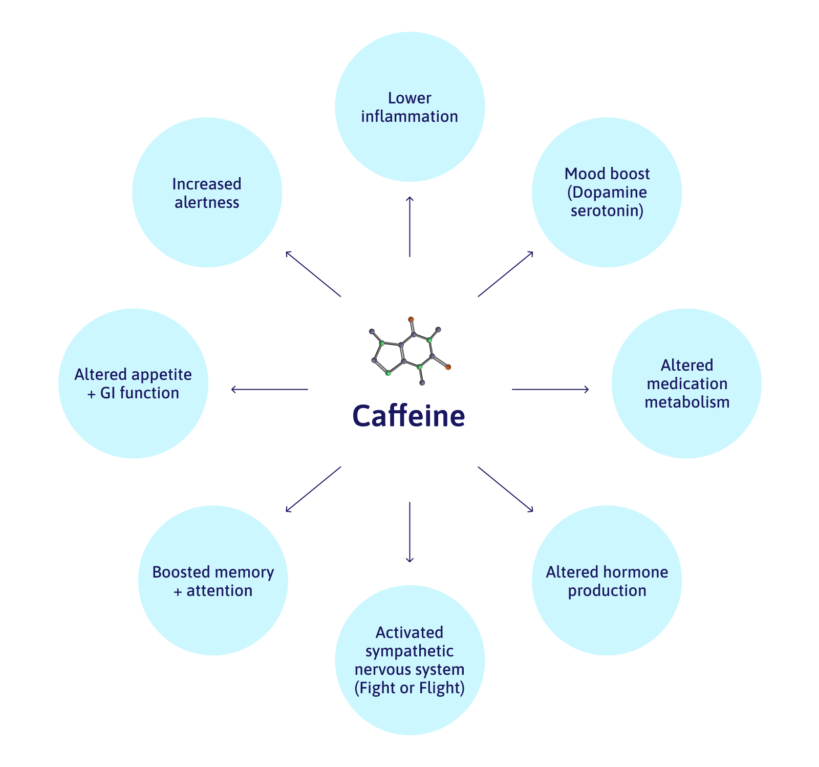 Caffeine: Lowers inflammation, increased alertness, boosted memory and attention, activated sympathetic nervous system (fight or flight), altered hormone production.