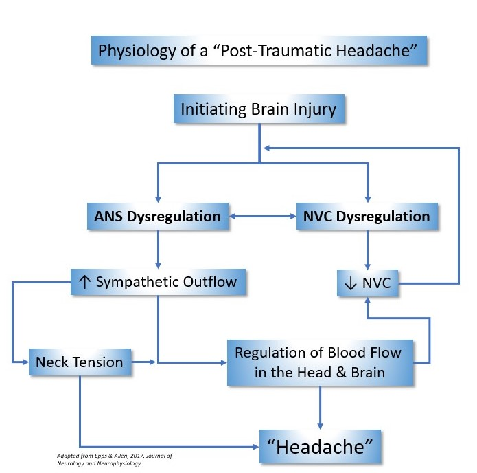 "The Physiology of a ""Post-Traumatic Headache"" as provided by Epps & Allen, from the Journal of Neurology and Neurophysiology, 2017."