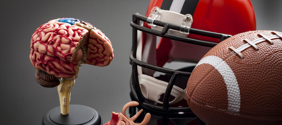 A photo showing a football helmet, a football, and a model of the human brain.