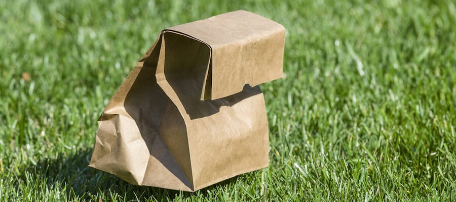 A brown paper bag sack lunch on the grass