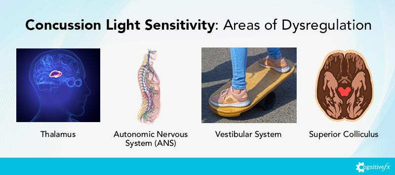 Concussion Light Sensitivity: Areas of Dysregulation include the Thalamus, the Autonomic Nervous System, the Vestibular System, and the Superior Colliculus.