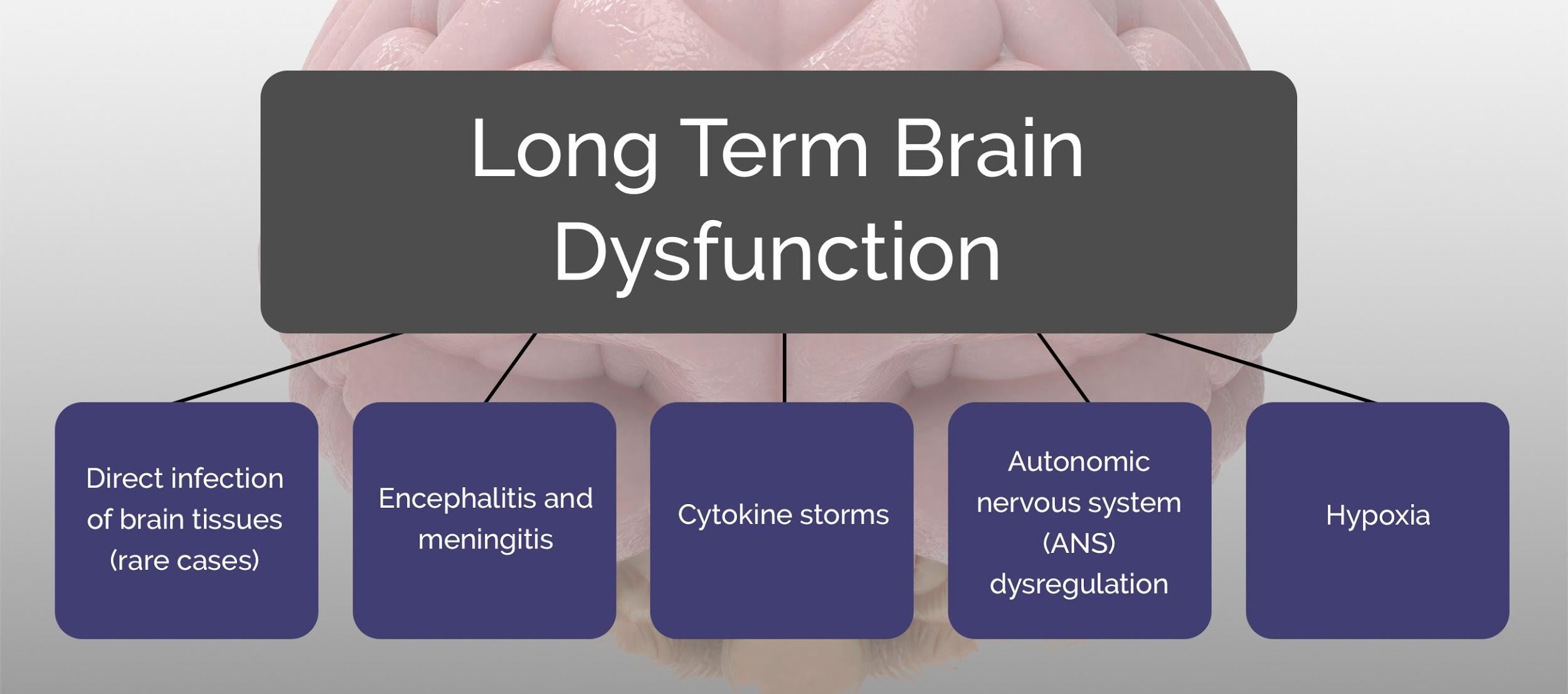 viral-encephalitis-long-term-effects-on-the-brain-1