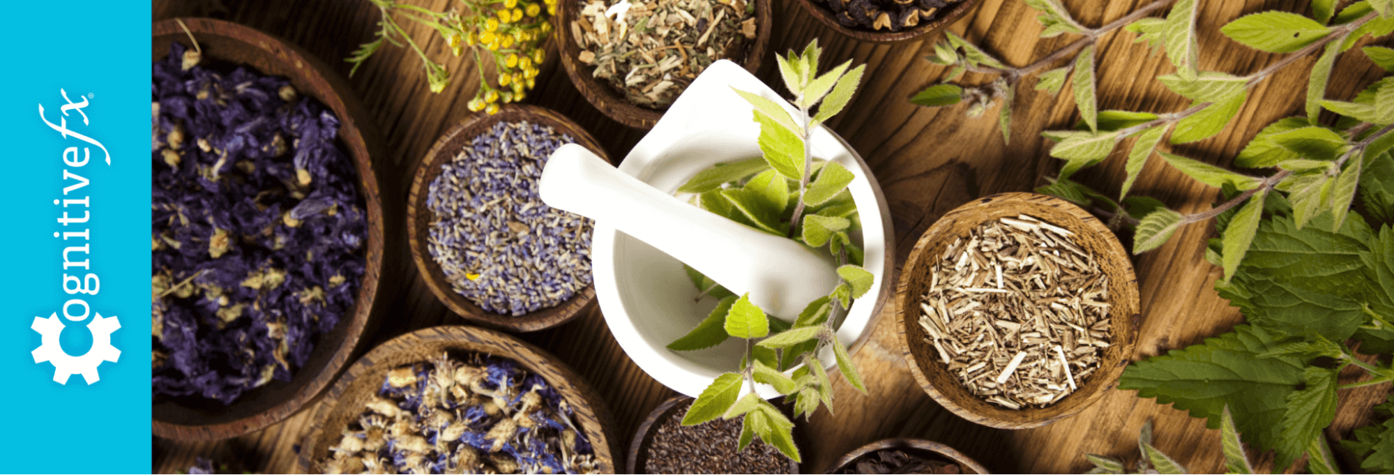 The Best Natural Remedies for Post-Concussion Syndrome Symptoms