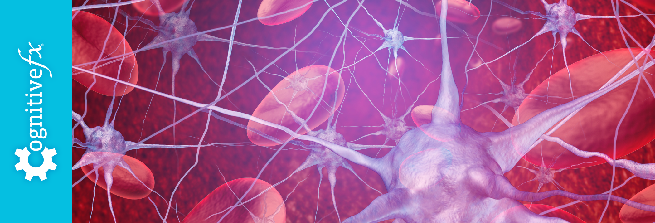 What is NeuroVascular Coupling?